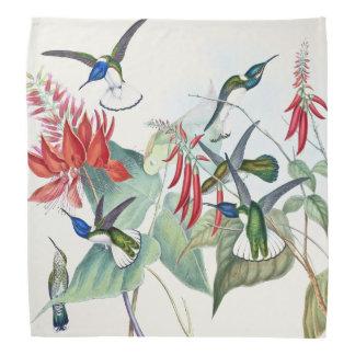 Bandana L'animal de faune d'oiseaux de colibri fleurit le