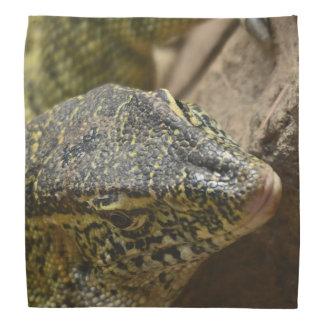 Bandana Lézard de moniteur du Nil de reptile
