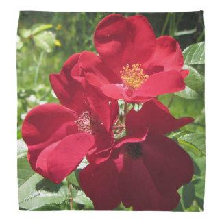 Bandana Roses rouges simples