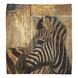 Bandana zèbre rustique d'animal de safari de l'Afrique de
