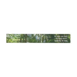 Bande Pour Adresse De Retour Forêt de vert tropical de palmiers