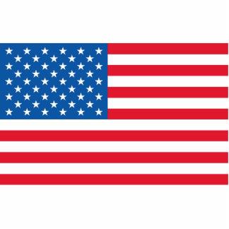 Bannière étoilée de drapeau des Etats-Unis Badge Photo Sculpture
