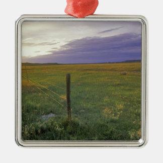 Barbelé Fenceline au Montana du nord-est Ornement Carré Argenté