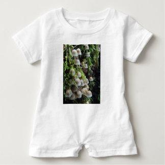 Barboteuse Champignons blancs minuscules