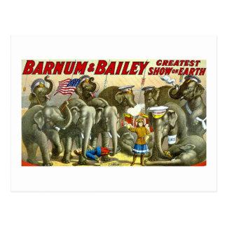 Barnum et Bailey - éléphants - annonce vintage Carte Postale