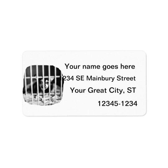 barres derrière noires et blanches de cage de étiquette d'adresse