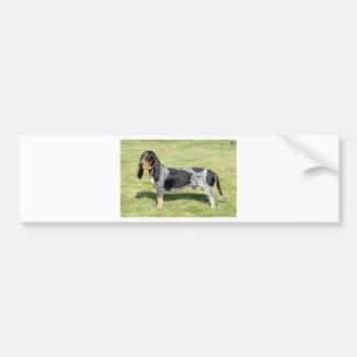 Basset Bleu de Gascogne Dog Autocollant Pour Voiture