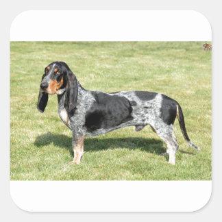 Basset Bleu de Gascogne Dog Sticker Carré