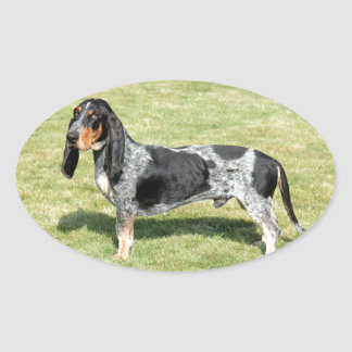 Basset Bleu de Gascogne Dog Sticker Ovale