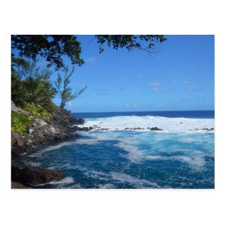 Bassin de Manapany (Ile de la Réunion) Carte Postale