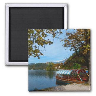Bateaux de touristes dans le lac saigné en automne aimant