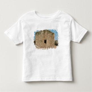 Bâtiment à vieux Jéricho T-shirt Pour Les Tous Petits
