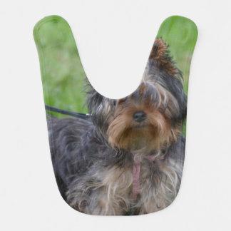 Bavoir Yorkshire Terrier adorable