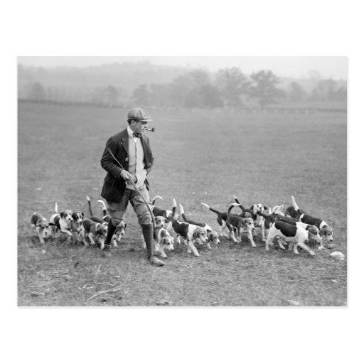 Beagle Club, 1914 Cartes Postales