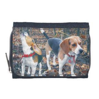 Beagles dans le portefeuille de beagle en bois