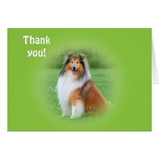 Beau carte de remerciements de chien de colley