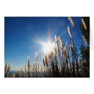 Beau carte pour notes d'herbe de matin