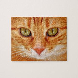 Beau chat de tigre orange aux yeux verts puzzle