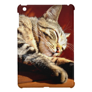 Beau chat tigré étui iPad mini