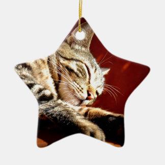 Beau chat tigré ornement étoile en céramique