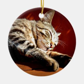 Beau chat tigré ornement rond en céramique
