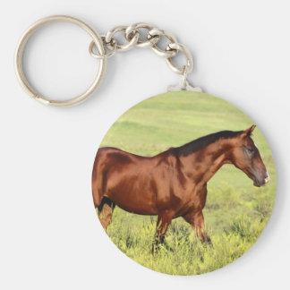 Beau cheval de baie porte-clé rond