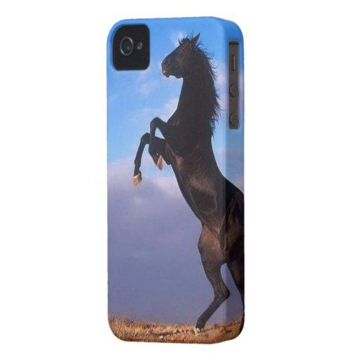 Beau cheval noir de élevage avec la photo de ciel  coques Case-Mate iPhone 4