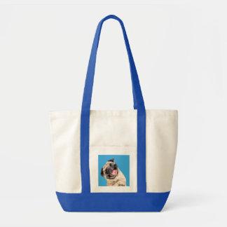 Beau chien de balais sacs