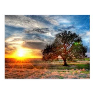Beau coucher du soleil carte postale