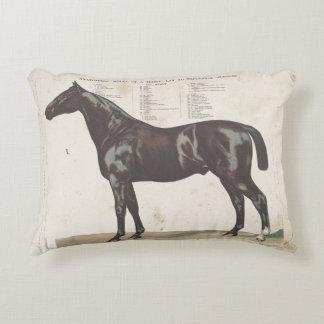Beau coussin vintage de cheval