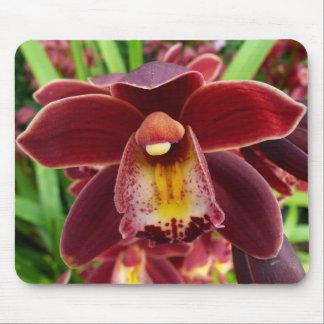 Beau floral rouge des orchidées I marron Tapis De Souris