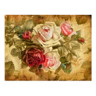 Beau groupe de roses sur l'arrière - plan vintage carte postale
