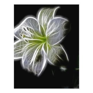 Beau lis blanc électrique prospectus 21,6 cm x 24,94 cm