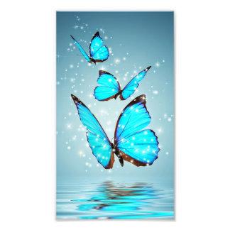 beau papillon bleu brillant photographie d'art