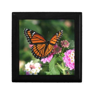 Beau papillon de monarque boîte à souvenirs