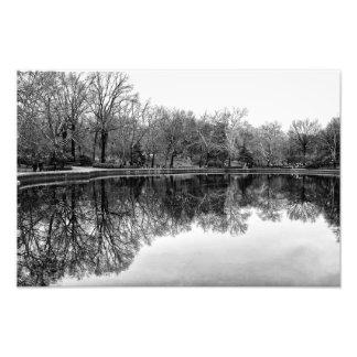 Beau paysage de Central Park dans noir et le blanc Photographies