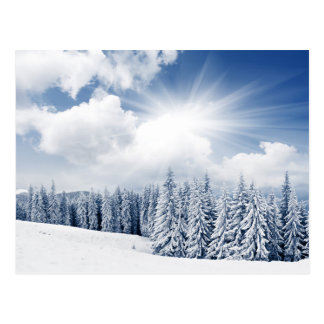 Beau paysage d'hiver avec la neige carte postale