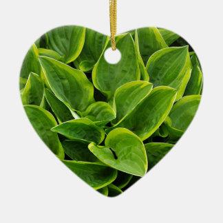 Beau plante vert de hosta ornement cœur en céramique