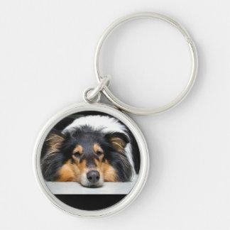 Beau porte - clé de couleur de nez de chien de porte-clé rond argenté