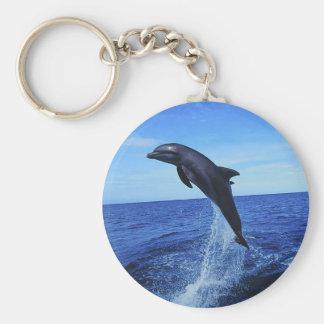 Beau porte - clé de dauphin porte-clés