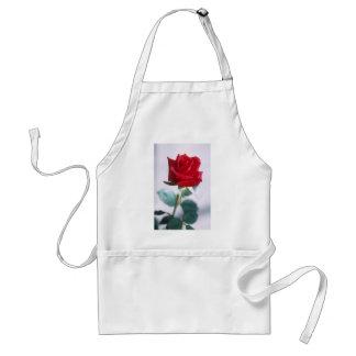 Beau rose rouge tablier