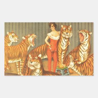 Beaucoup choient des tigres sticker rectangulaire