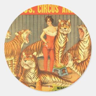 Beaucoup choient des tigres sticker rond