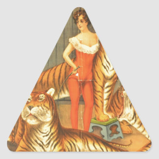 Beaucoup choient des tigres sticker triangulaire