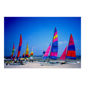 Beaucoup de bateaux à voile de Hobie au Jersey Posters
