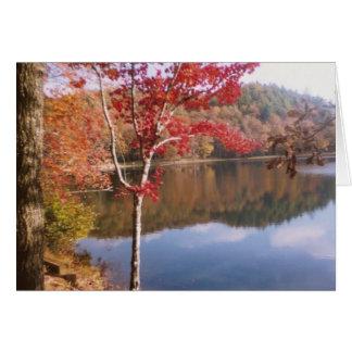 Beauté d'automne carte de vœux