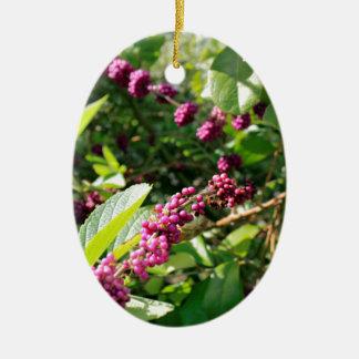 Beautyberry sauvage Bush dehors dans le jour Ornement Ovale En Céramique