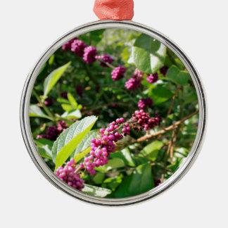Beautyberry sauvage Bush dehors dans le jour Ornement Rond Argenté