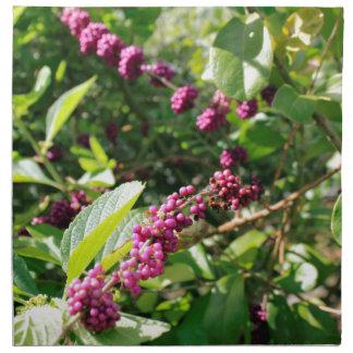 Beautyberry sauvage Bush dehors dans le jour Serviettes De Table