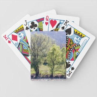 Beaux arbres verts jeu de cartes